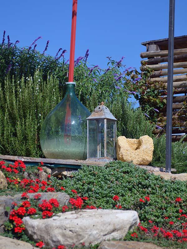 Giardino sperimentale vivaio 98 3 piante mediterranee tarquinia vt - Piante mediterranee da giardino ...
